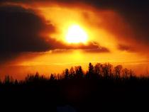 Sonnenutergang nahe Porvoo von Johanna Knaudt