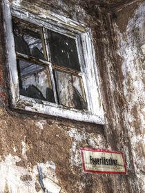 Fenster ins Nichts von Johanna Knaudt