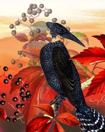Harpy by Sherri Leeder