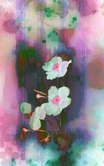 'Blüten' von barbaram
