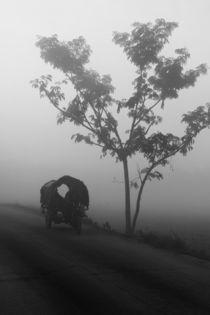 Take Me Home von Minhajul Haque