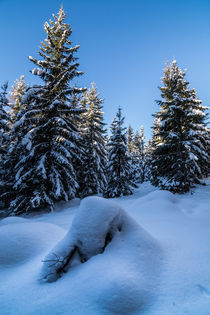 Snow by Simon Kirchmair