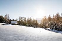 Winter Pano by Simon Kirchmair