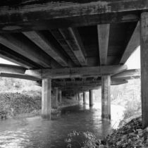 Under Bridge by dag