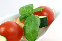 Gemüsespiess mit Garnelen II