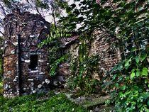 House of Stone ~  by bebra von bebra