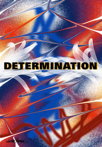 Determination  by Vincent J. Newman
