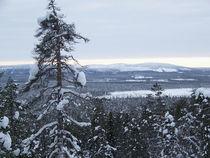 Die Weiten Lapplands von Johanna Knaudt