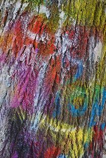 coloured tree, Prague... 2 by loewenherz-artwork