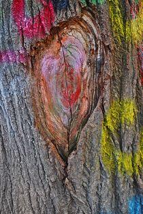 coloured tree, Prague... 1 von loewenherz-artwork
