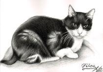 Katze Filou von Nicole Zeug