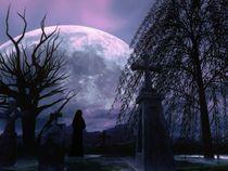 Mit den Augen der Nacht von drachenlord