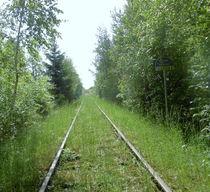 Der Weg by Martina Lender-Frase