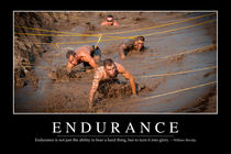 Endurance Motivational Poster von Stocktrek Images