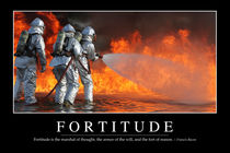 Fortitude Motivational Poster von Stocktrek Images