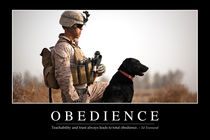 Obedience Motivational Poster von Stocktrek Images