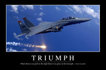 Triumph: Motivational Poster von Stocktrek Images