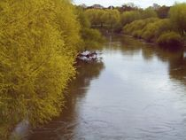 Am Fluß by manfred richter