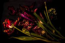 Blumenstillleben von Silke Günther
