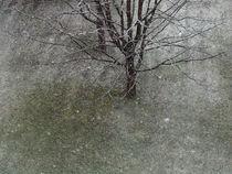 Winterzauber14pe