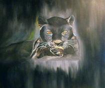 Midnight Glory by Bonnie Boerger