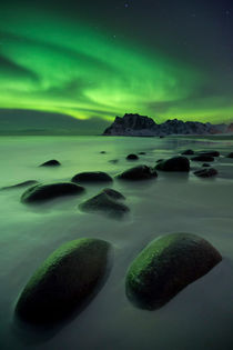 Aurora borealis over a beach on the Lofoten in Norway by Sara Winter