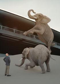 Jumping elephants von Niko Vazquez