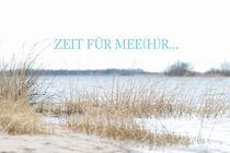 Meersucht von Annett Mirsberger