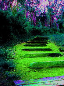Stairway to Dreamtime