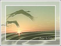 Digital Flying away von bilddesign-by-gitta