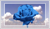 Digital Rose himmelblau by bilddesign-by-gitta