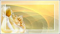 Digital Sonnige Rose by bilddesign-by-gitta