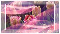 Digitaler Blumentraum 06 by bilddesign-by-gitta