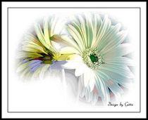 Digitaler Blumentraum 19 von bilddesign-by-gitta