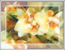 Digitaler Blumentraum 27 by bilddesign-by-gitta