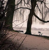 Aussenalter im Herbstdunst by Nicole Bäcker