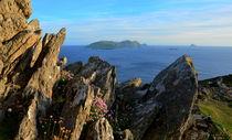 View of the Blasket islands von Barbara Walsh
