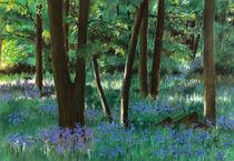 Im Wald / In the Forest von J.P. Texon