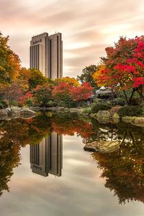Herbst in Planten un Blomen Hamburg by Dennis Stracke
