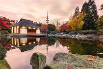 Herbst in Planten un Blomen Hamburg von Dennis Stracke