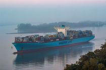 Maersk Riesencontainer Schiff in der Elbe von Dennis Stracke
