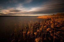 Ammersee-21022016-8928
