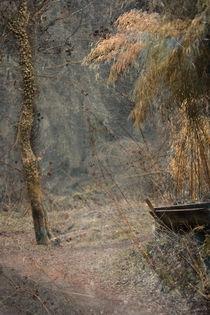 BAMBUSPARK by © Ivonne Wentzler