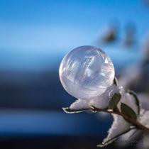 2016-01-seifenblasen-gefroren-023