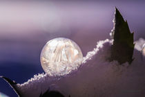 2016-01-seifenblasen-gefroren-025