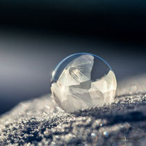 2016-01-seifenblasen-gefroren-082
