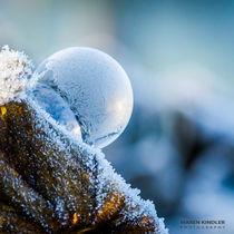 FROZEN BUBBLE - gefrorene Seifenblasen by Maren Kindler