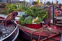 Boat Gardens by Lija Baneviciute