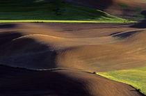 Land Patterns von Jim Corwin
