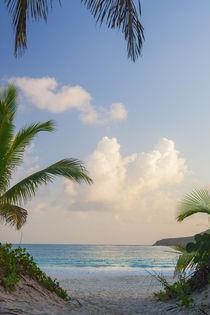 Flamenco Beach Culebra Island von Matilde Simas